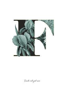 Flower Alphabet - F