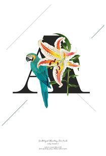 Botanical Alphabet - A