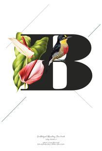 Botanical Alphabet - B