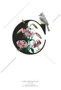 Botanical Alphabet - C