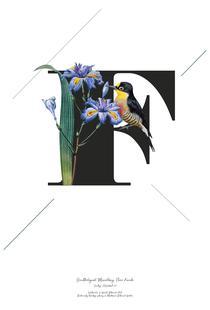 Botanical Alphabet - F