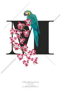Botanical Alphabet - M