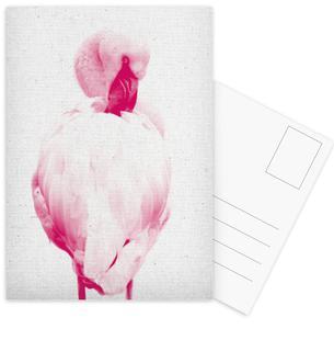Flamingo 02