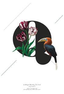 Botanical Alphabet - Q