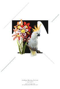 Botanical Alphabet - T