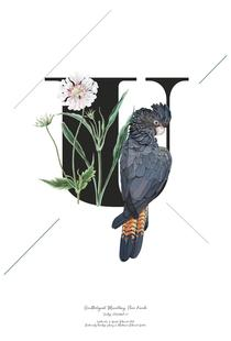 Botanical Alphabet - U