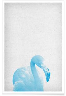 Flamingo 04