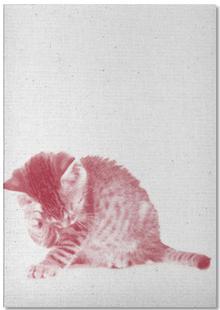 Kätzchen 01