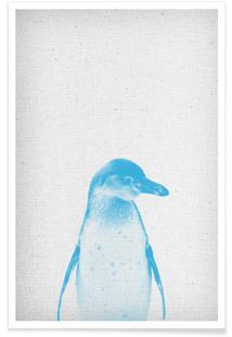 Pinguin 01