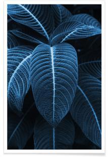 Leaf Me Alone 01