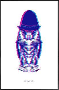 Magenta Owl with cyan beanie