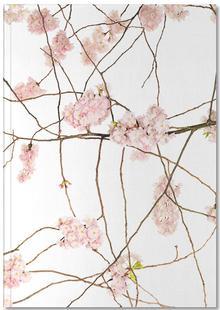 Flora - Japanische Kirsche
