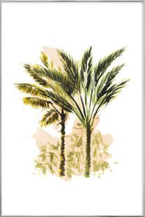 Plants 03