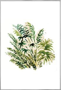 Plants 04