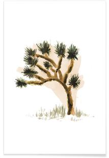 Plants 05