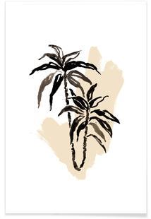 Plants & Colours 3