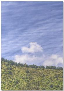 Wavy Mountains