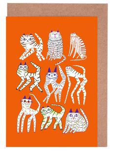 Cats 9 Orange