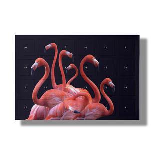 Flamingo Band by @nodar