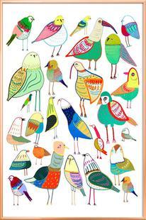 Birds New