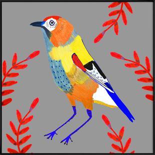 Bird Pretty