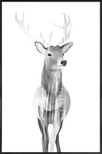 Deer Black & White