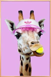 Tennis Giraffe
