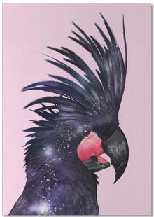 Galaxy Bird