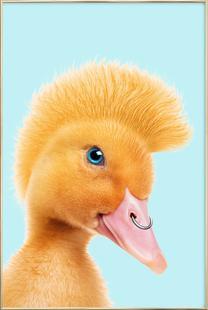Rebel Duckling