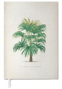 Les Palmiers 25 - Kerchove