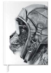 Aviator Monkey