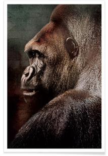 Vintage Gorilla