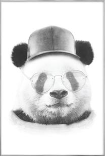 Cool Panda