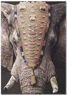 Decorated Elephant