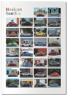 Mexican Beetle Poster