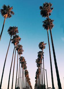 Wanna Be in LA by @samfn
