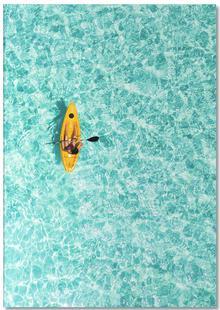 Paddle by @moofushi