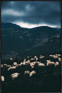 Ride out the Storm by Szabo Ervin-Edward