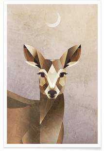 Dawn Deer