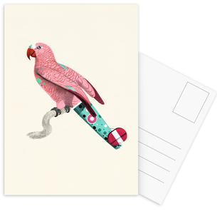 Pale Pink Parrot