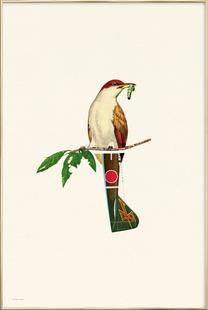 The Bird & The Worm