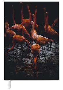 Dark Flamingos