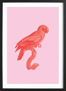 Vintage Parrot