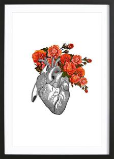Flowering heart