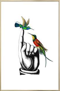 Hummingbirds on hand