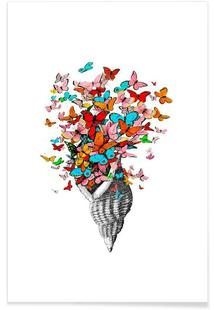 Seashell with butterflies