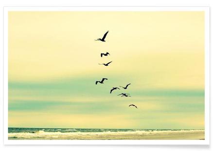 Across The Endless Sea