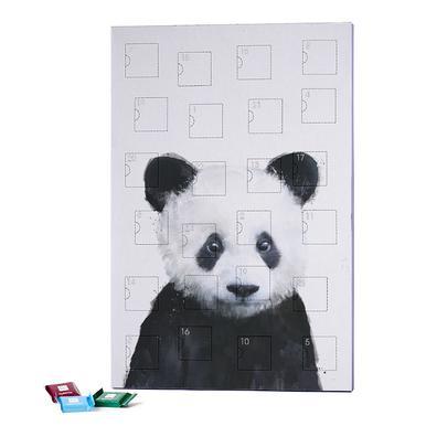 Little Panda