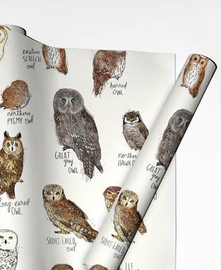 Owls papier cadeau