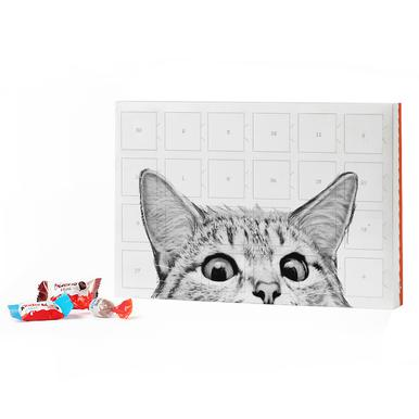 Cat 2019 Chocolate Advent Calendar - Kinder